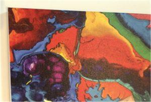Узорак за штампу на платну ВЕР-Е2000УВ